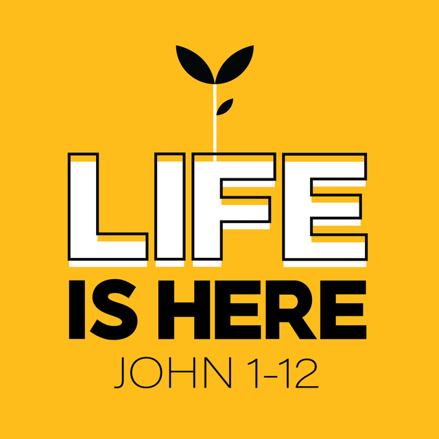 Week 7 from 'Life is Here' (our series in John's biography of Jesus)…